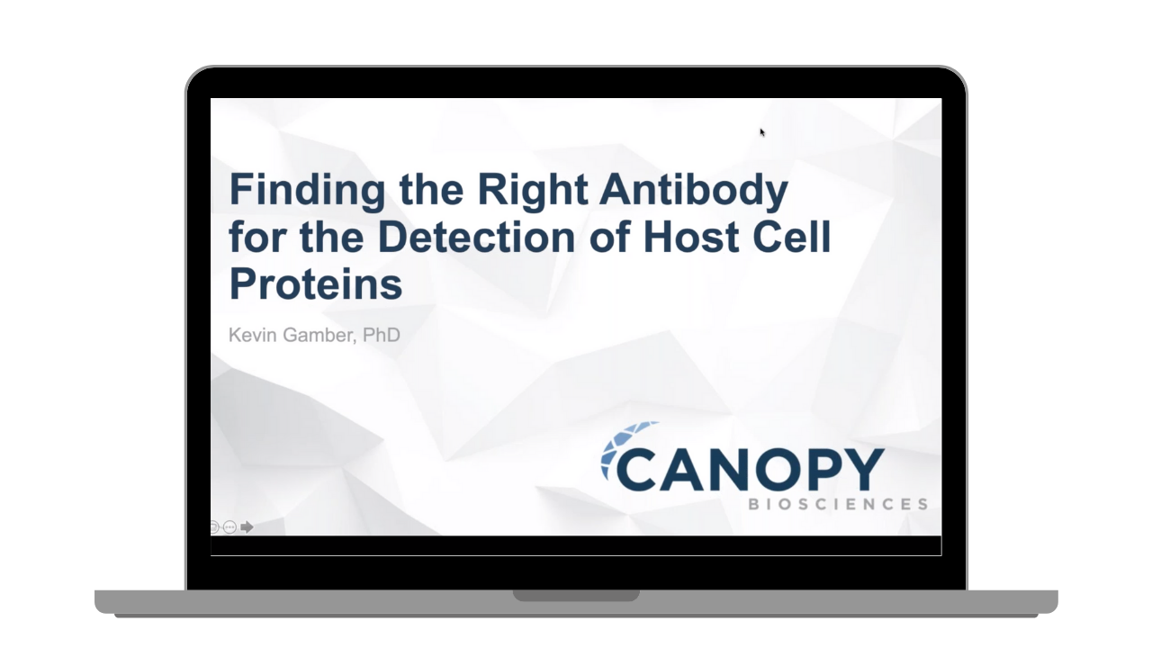 How to Find the Right Antibody for Detection of Host Cell Proteins